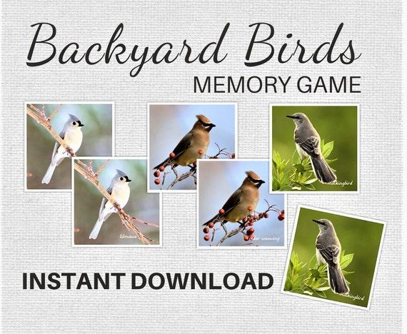Backyard Birds Memory Game Matching Cards  DIGITAL DOWNLOAD