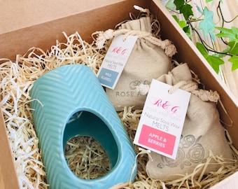 Wax Melt & Burner Boxed Gift Set - Starter Set - Chevron Ceramic Burner - Light Teal