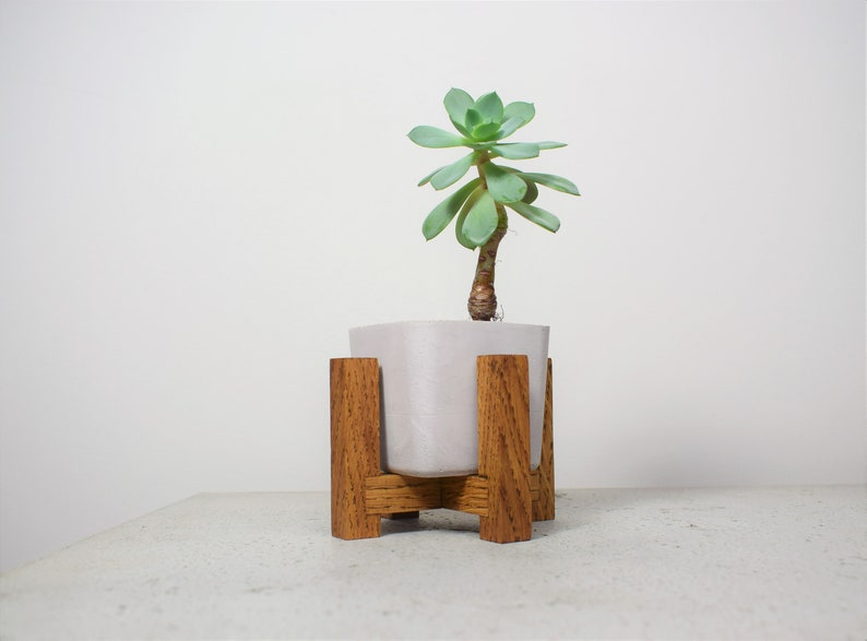 Small wooden plant stand with concrete pot