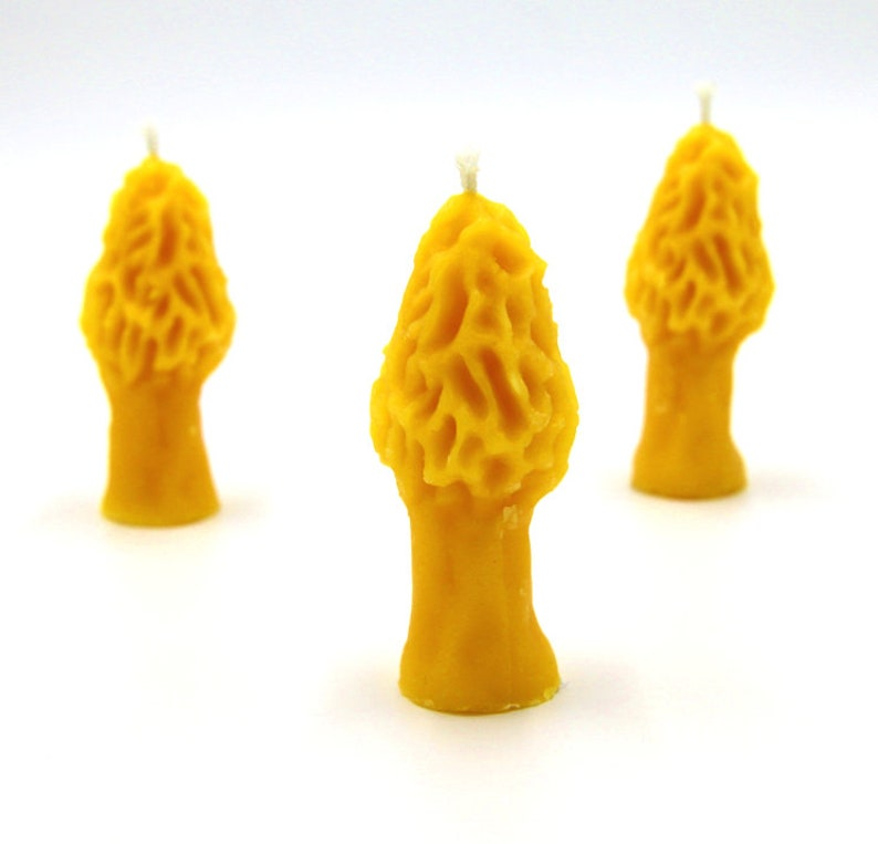 1 Candle Per Order Morel Candle