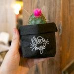 Kraft Paper Succulent Planter, Washable Paper Bag, Small Holder, Pot