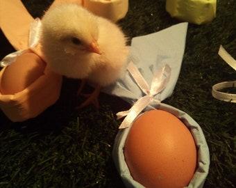 Easter rabbit ear egg holder from napkins folded ready
