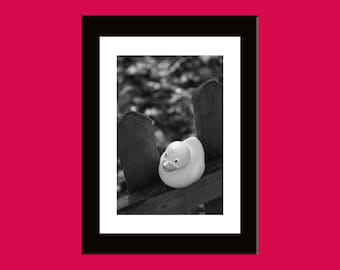 20X30 cm art photo numbered print - Over the head