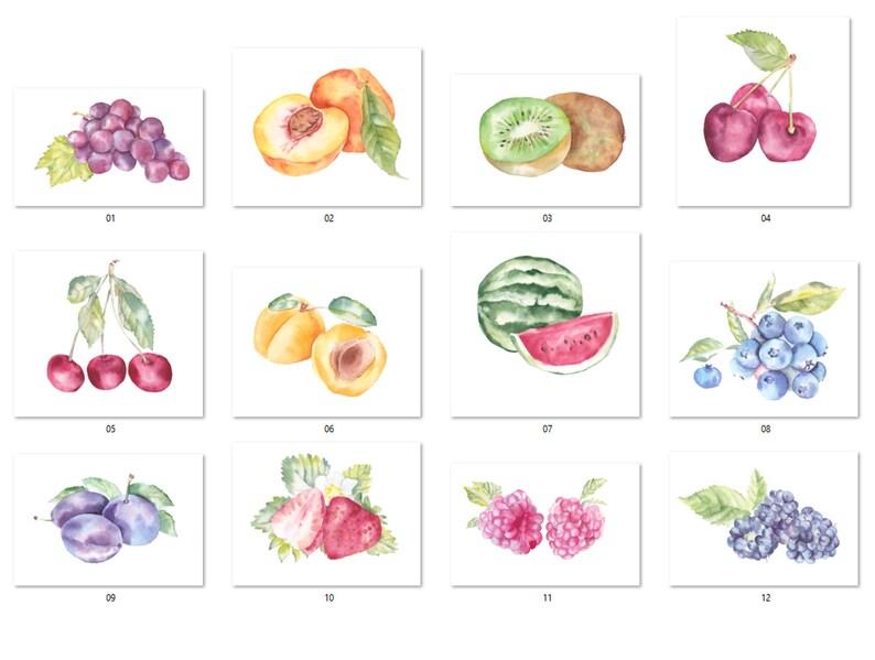 Kitchen decor grape and more Digital PNG Fruit Variety Clipart Lemons Watercolor fruit Fruit watercolor clipart Peaches illustration