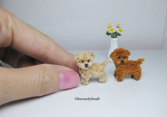 Crochet maltese, amigurumi maltese, crochet shih tzu, stuffed dog ... | 400x570