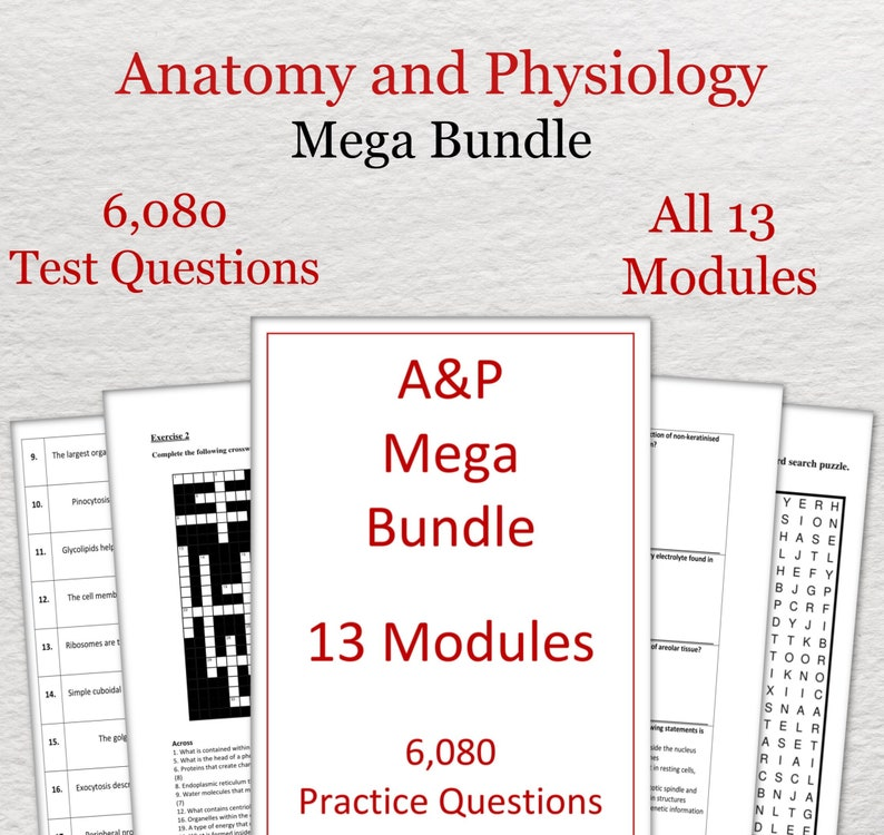 A&P Mega Bundle, 6,080 Practice Questions - Anatomy and Physiology Revision