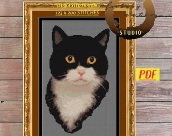 Tuxedo Cat Cross Stitch Embroidery Pattern, XStitch PDF Pattern Download,  How To Cross-Stitch Instructions Included with Chart