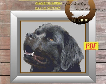 Black Newfoundland Cross Stitch Pattern, XStitch PDF Pattern Download,  How To Cross-Stitch Instructions Included with Chart