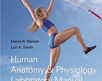 Anatomy Physiology Etsy