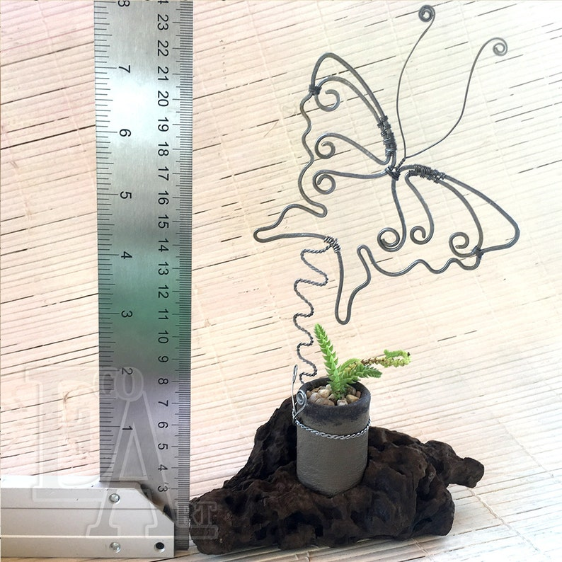 Succulent on a stand made from snags with a butterfly Twisted wire