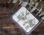 Eucalyptus Mint Wax Melt Soy Wax Melt Essential Oil Wax Melt