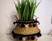 Small Handwoven Belly Basket foldable for plants or storage scandi, boho