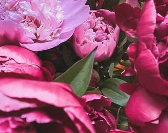 Distance Healing, Rose Reiki Divine Feminine & Womb Energy - 30 minutes