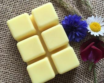 Lemon Zest Scented Soy Wax Melt Bar - Folly Favourites Collection ~ Wax Tart