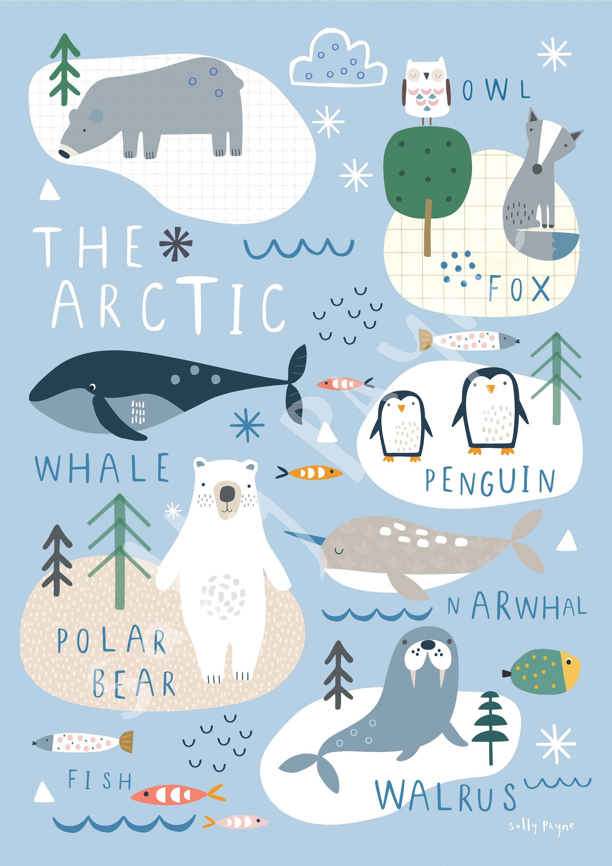 Arctic  Wall art -  wall art -  Children's prints -  Children's wall art - Children's Illustration