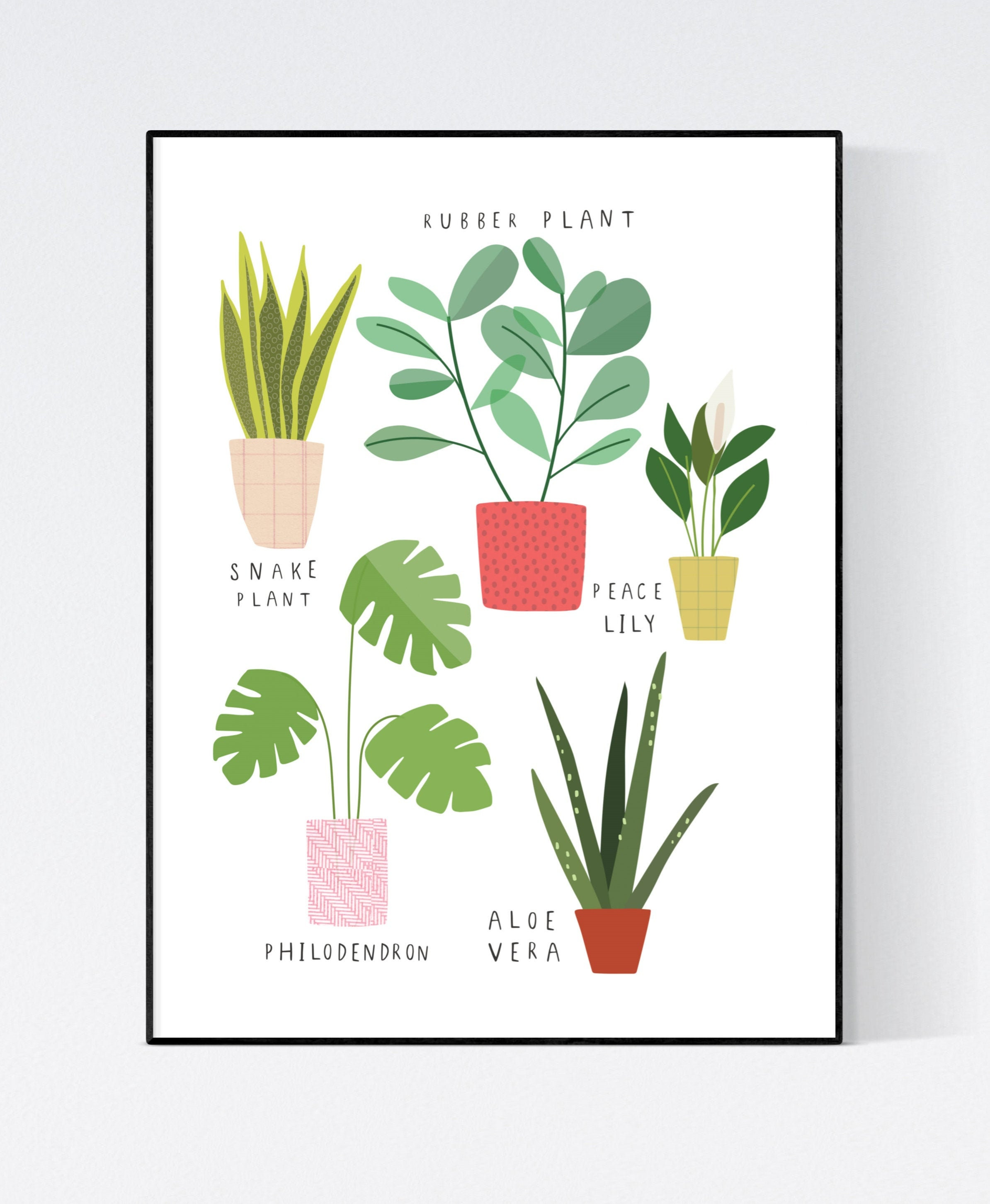 Houseplant Wall art -  wall art -  Plant prints -