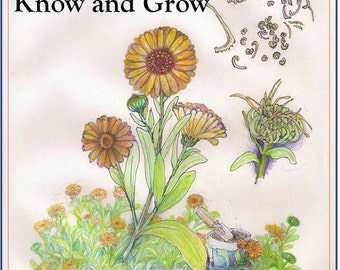 Ten Herbs to Know and Grow