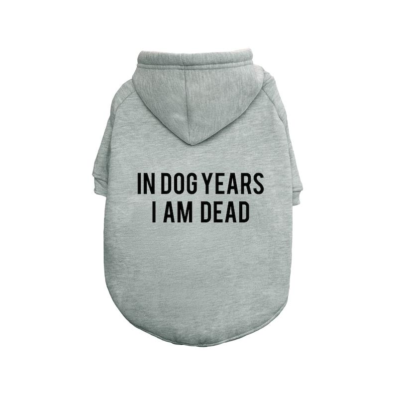 In Dog Years I Am Dead Hoodie  Dog Hoodie  Pet Hoodie  Hypebeast  Cute Hoodie  Hypepuppy  Streetwear for pets  Pet hype streetwear