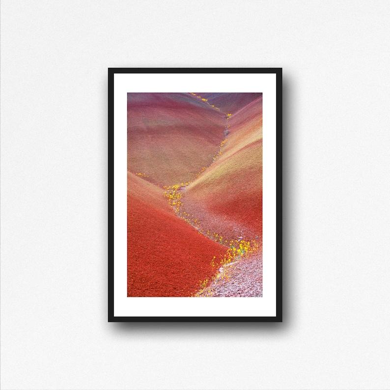 Wall Art John Day Painted Hills Oregon Rainbow Hill Abstract Flower Nature Photography Landscape Print Desert Photo