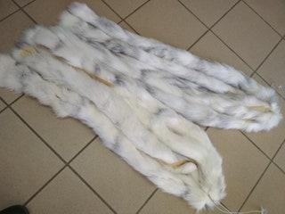 Fur white and silver Fox fluffy stripes trims diy crafts use it collar, scarf, hood.