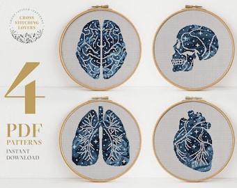 SET 4 Human anatomy cross stitch pattern, Modern counted cross stitch bundle, PDF pattern, embroidery design, instant download PDF chart