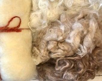 Core Wool, Suri Alpaca Fleeces for Needle Felting Projects, Wool Only Set