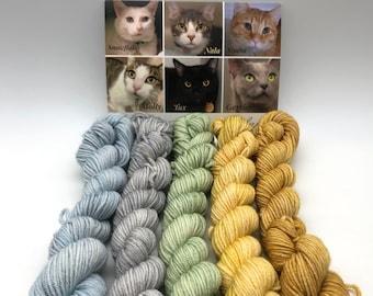 Kitty eye color inspiration, Minis, Fingering, 85/15 Superwash, Merino Nylon blend, 400 Meters, Denver Dumb Friends League, Kitty Yarn, sock