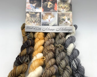 Mini Skein, Meow Mélange, Fingering, 85/15 Superwash Merino/Nylon, 400 Meters, Herd Of Cats, Denver Dumb Friends League, Kitty Yarn