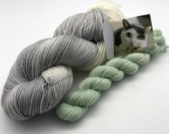 Prrrrrfect Sock Combo, Cat color yarn with mini to match eyes, 480 total meters, 85/15 Superwash Merino/Nylon, Meow Mélange, Herd of Cats