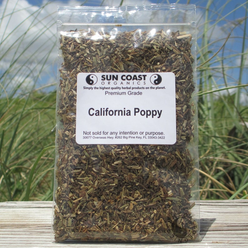 California Poppy  Eschscholzia Californica image 0