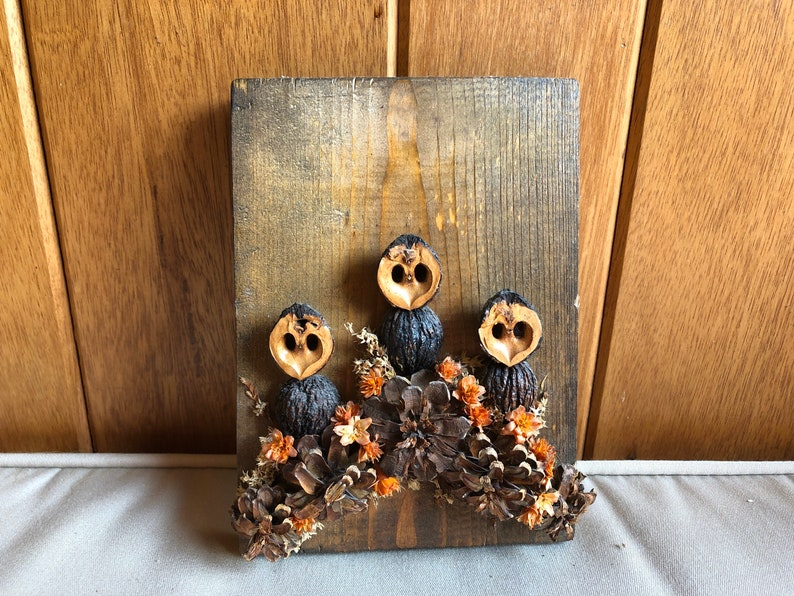 Rustic Owl Wall Decor  Antiqu Wood Dried Flower and Acorn image 0