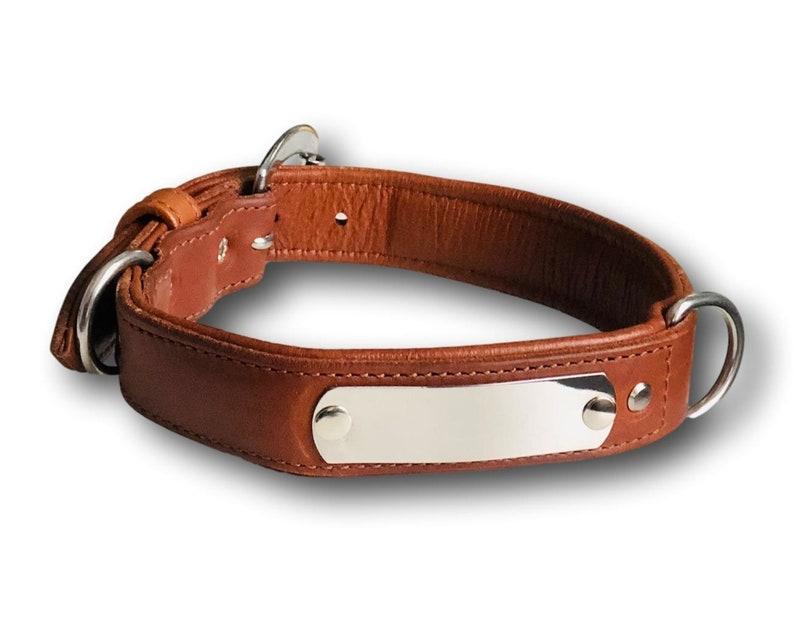leather dog leash, Leash