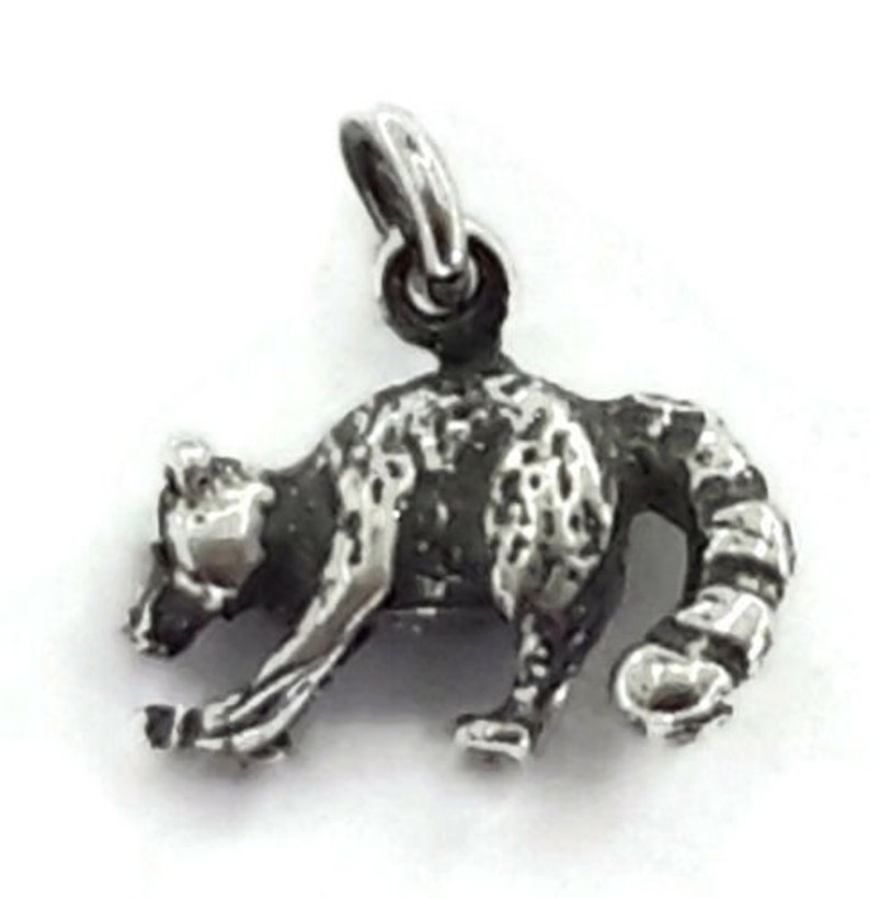 Charm Pendant .925 Sterling Silver. Mapache Racoon