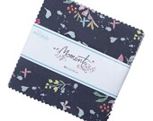 5 quot Charm Pack MOMENTS by Minki Kim for RBD - 42 fabrics