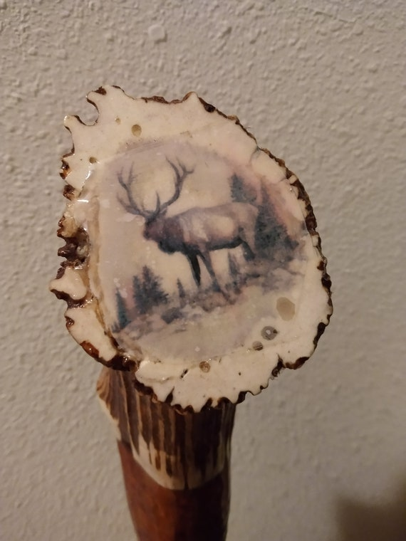 Pecan and Burl Walking Stick/Cane, Walking Canes, Hand Crafted, Hiking Sticks, Outdoor Walking Stick