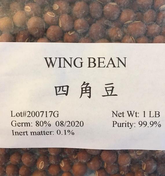 20 WINGED BEAN seeds; Asparagus pea Four Angled bean; Dara dham bala; Goa bean; \u0110\u1eadu r\u1ed3ng Wing pea