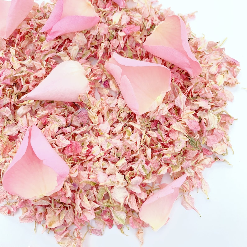 Natural Biodegradable Confetti Eco Friendly Wedding Confetti Dried Throwing Petals 1LTR Pale Pink Dried Delphinium and Rose Petals