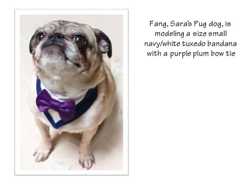 Dog Wedding Bandana-Red Gingham Bow Tie Dog Bandana-Dog Tuxedo Bandana-Wedding Dog Attire-Red Dog Bow Tie-Dog Ring Bearer-Dog Ring Holder-