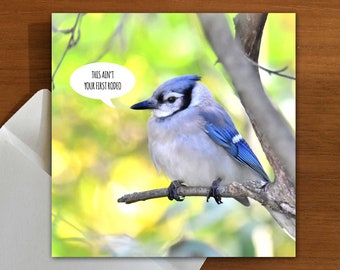 ain't your first rodeo | you've got this | empathy | support | greeting card with bird
