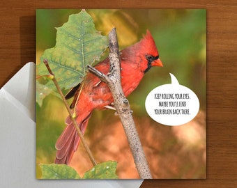 don't you roll your eyes at me, missy  | sassy | shadey | greeting card with bird
