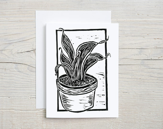Snake Plant Note Card