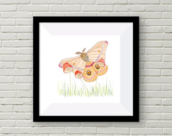 Moth and Mushrooms Print | Wall Art