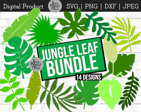 Jungle Leaves Tropical Svg Dxf Png Jpeg Monstera Leaf Etsy