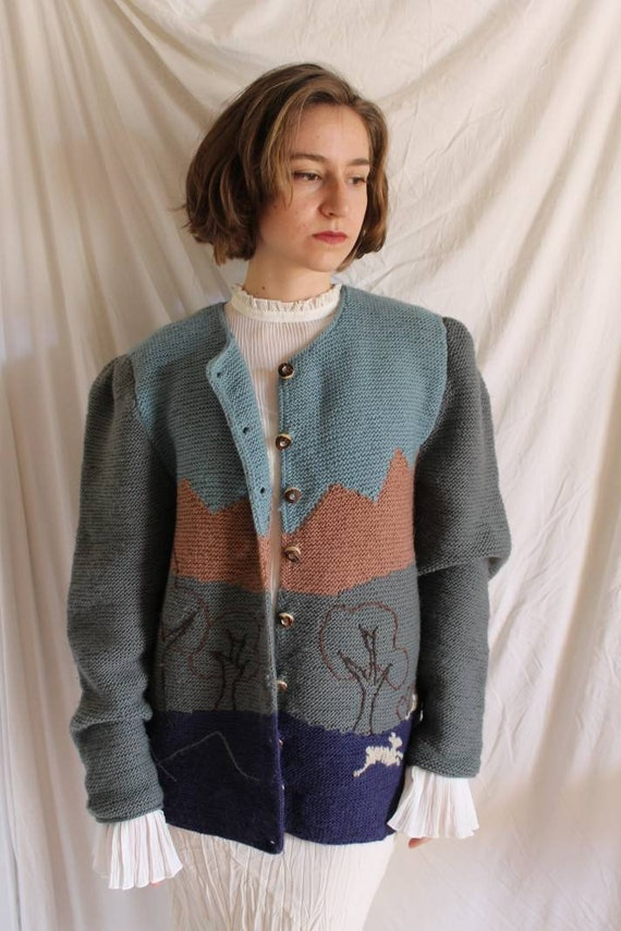 Beautiful austrian scenic tracht sweater with Ali… - image 8