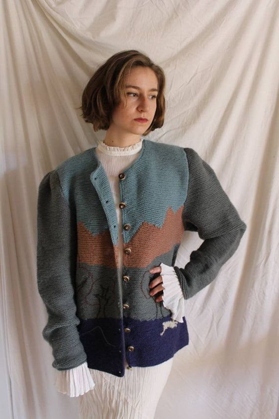 Beautiful austrian scenic tracht sweater with Ali… - image 9