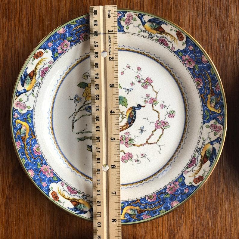 The Potters Co operative Co Birds of Paradise Plates set of 5 plates East Liverpool Ohio USA