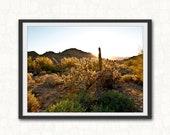 Desert Wall Art, Desert Print  Desert Landscape Photography,  Arizona Art Print,  Desert Landscape, Southwestern Printable Art, Cactus Print