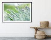 Grass Wall Art, Botanical Picture Printable, Printable Wall Home Decor, Closeup Wall Art, Greenery Decor, Prairie Grass Art