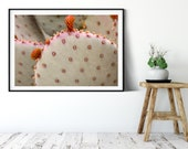 Prickly Pear Wall Art, Modern Cactus Picture Printable, Printable Wall Home Decor, Closeup Wall Art, Desert Decor, Arizona Botanical Print