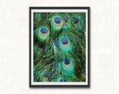 Colorful Peacock Feather Print |  Peacock Wall Decor |Peacock Feather Wall Art  | Bird Photography | Peacock Tail Feathers Print